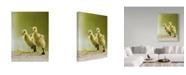 "Trademark Global Mircea Costina '1 2 3 Go' Canvas Art - 14"" x 2"" x 19"""