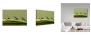 "Trademark Global Javier Senosiain 'Tres En Rana' Canvas Art - 19"" x 2"" x 12"""