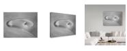"Trademark Global Roland Shainidze 'Twist Iv' Canvas Art - 47"" x 2"" x 35"""