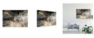"Trademark Global Milan Malovrh 'In Motion Blurred' Canvas Art - 19"" x 2"" x 12"""