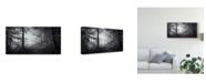 """Trademark Innovations Norbert Maier 'Point Of No Return' Canvas Art - 32"""" x 2"""" x 16"""""""