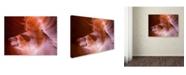 "Trademark Global Moises Levy 'Spiral III' Canvas Art - 30"" x 47"" x 2"""