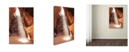 """Trademark Global Moises Levy 'Illumination I' Canvas Art - 24"""" x 16"""" x 2"""""""