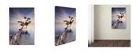 "Trademark Global Moises Levy 'Water Tree X' Canvas Art - 32"" x 22"" x 2"""