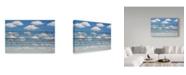 "Trademark Global Jared Lim 'Concert For Birds' Canvas Art - 19"" x 12"" x 2"""