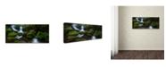 "Trademark Global Jason L Stephens 'Hello Horseshoe' Canvas Art - 32"" x 14"" x 2"""