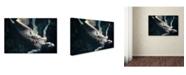 """Trademark Global Shinichiro Yamada 'Ophelia' Canvas Art - 24"""" x 16"""" x 2"""""""