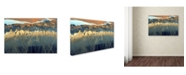 "Trademark Global Tanja Ghirardini 'California Aerial' Canvas Art - 24"" x 16"" x 2"""