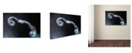 """Trademark Global Ionut Harag 'Looping' Canvas Art - 32"""" x 22"""" x 2"""""""