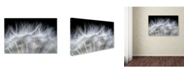 "Trademark Global Peter Fallberg 'Blow It' Canvas Art - 24"" x 16"" x 2"""