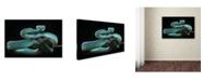 "Trademark Global Wel Nofri 'Trimeresurus Insularis' Canvas Art - 47"" x 30"" x 2"""