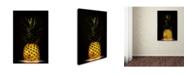 "Trademark Global Wieteke De Kogel 'Pineapple' Canvas Art - 47"" x 30"" x 2"""