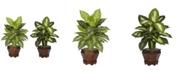 Nearly Natural Dieffenbachia w/Wood Vase Silk Plant, Set of 2