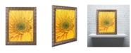"""Trademark Global PIPA Fine Art 'Joyful Color' Ornate Framed Art - 11"""" x 14"""""""