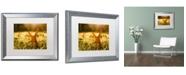 "Trademark Global PIPA Fine Art 'Fall Leaf in Morning Sun' Matted Framed Art - 16"" x 20"""