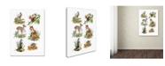 "Trademark Global The Macneil Studio 'Wildlife Collage' Canvas Art - 18"" x 24"""