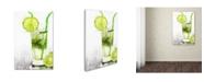 "Trademark Global The Macneil Studio 'Green Cocktail' Canvas Art - 16"" x 24"""