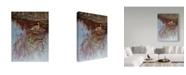 "Trademark Global Rusty Frentner 'Crane' Canvas Art - 18"" x 24"""