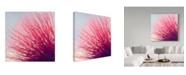 "Trademark Global Incredi 'Little Wonders Pink' Canvas Art - 14"" x 14"""