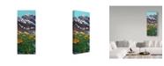 "Trademark Global James W. Johnson 'Torreys Peak In Spring' Canvas Art - 10"" x 24"""
