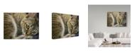 "Trademark Global Janet Pidoux 'Bright Eye Kitten' Canvas Art - 24"" x 18"""