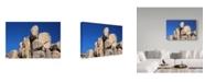 "Trademark Global Janice Sullivan 'Joshua Rocks' Canvas Art - 19"" x 12"""