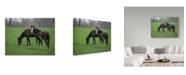 "Trademark Global J.D. Mcfarlan 'Horses Landscape' Canvas Art - 24"" x 18"""