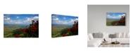 """Trademark Global J.D. Mcfarlan 'St Johns 2' Canvas Art - 19"""" x 12"""""""