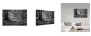"Trademark Global J.D. Mcfarlan 'Ir Middleton Place, Sc 3' Canvas Art - 19"" x 12"""