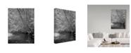 "Trademark Global J.D. Mcfarlan 'Smokies Ir 2' Canvas Art - 18"" x 24"""