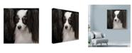 "Trademark Global Lori Hutchison 'Papillion Black And White' Canvas Art - 14"" x 14"""