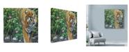 "Trademark Global Luis Aguirre 'Endangered Tigers' Canvas Art - 18"" x 18"""