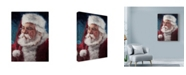 "Trademark Global Meadowpaint 'Elderly Santa Portrait' Canvas Art - 24"" x 32"""