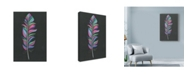 "Trademark Global Nicky Kumar 'Colorful Feather' Canvas Art - 12"" x 19"""