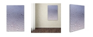 "Trademark Global Kurt Shaffer 'Condensation on a Cold Window' Canvas Art - 16"" x 24"""