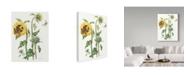 "Trademark Global Janneke Brinkman-Salentijn 'October Sunflower' Canvas Art - 35"" x 47"""