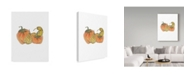 "Trademark Global Jessmessin 'Gourds' Canvas Art - 24"" x 32"""