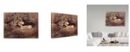 "Trademark Global Rusty Frentner 'Mexican Wolf' Canvas Art - 24"" x 32"""