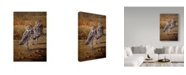 """Trademark Global Wilhelm Goebel 'Burrowing Owls' Canvas Art - 22"""" x 32"""""""
