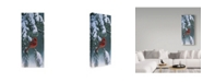 "Trademark Global Wilhelm Goebel 'The Light Of Winter' Canvas Art - 8"" x 19"""