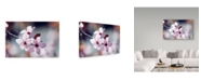 "Trademark Global Incredi 'Pink Macro' Canvas Art - 47"" x 30"""