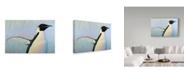 "Trademark Global James W. Johnson 'Summertime' Canvas Art - 47"" x 30"""