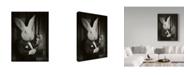"Trademark Global J Hovenstine Studios 'Rabbit Magician Bw' Canvas Art - 35"" x 47"""