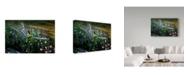 """Trademark Global J.D. Mcfarlan 'Flower Plow' Canvas Art - 32"""" x 22"""""""