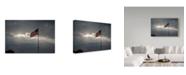 "Trademark Global Kurt Shaffer 'Light On The Flag' Canvas Art - 47"" x 30"""