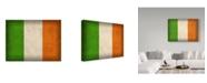"Trademark Global Red Atlas Designs 'Ireland Distressed Flag' Canvas Art - 47"" x 35"""