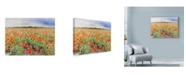 "Trademark Global Li Bo 'Blooming Poppy 3' Canvas Art - 47"" x 35"""