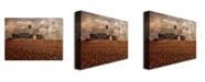 "Trademark Global Lois Bryan 'Light for the Farm' Canvas Art - 32"" x 22"""
