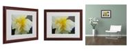 """Trademark Global Monica Fleet 'Sparkling Truth' Matted Framed Art - 20"""" x 16"""""""