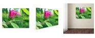 """Trademark Global Monica Fleet 'Unfolding Transformation' Canvas Art - 47"""" x 35"""""""